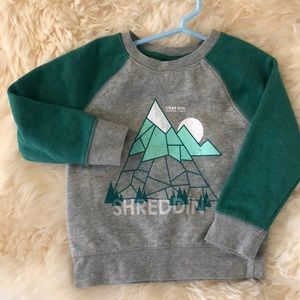 CAT & JACK green and gray toddler boy sweater